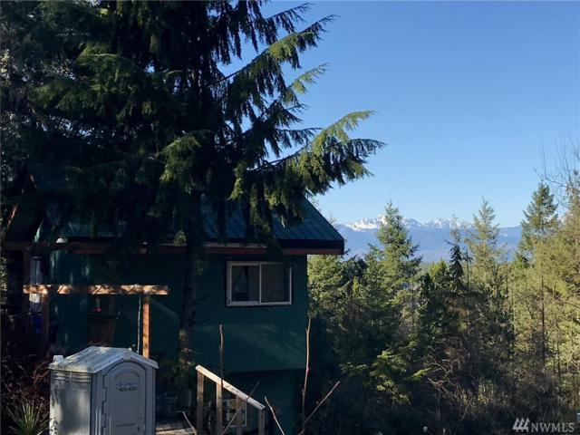 1121 E Timber Tides Dr, Union, WA 98592 (#1244822) :: Homes on the Sound