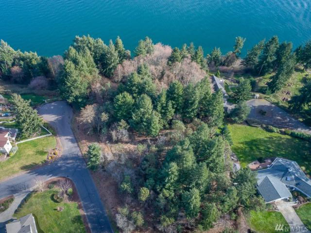 1217 Xxx Queets Dr, Fox Island, WA 98333 (#1245300) :: Brandon Nelson Partners