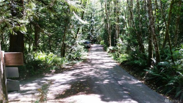 0-Lot 31 NW Four Wheel Dr, Seabeck, WA 98380 (#1245882) :: Real Estate Solutions Group