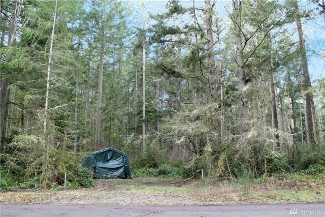 11616 109th Av Ct, Anderson Island, WA 98303 (#1246021) :: Homes on the Sound