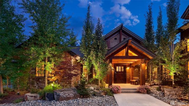 150 Blue Flame Lane, Cle Elum, WA 98922 (#1246129) :: Real Estate Solutions Group