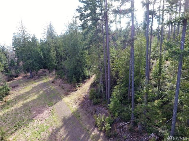 0-Lot 2 Whitney Ct, Quilcene, WA 98376 (#1246233) :: Homes on the Sound