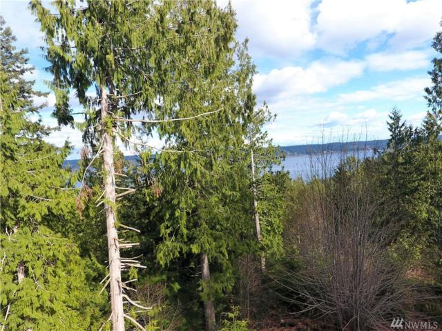 0-Lot 3 Whitney Ct, Quilcene, WA 98376 (#1246272) :: Homes on the Sound