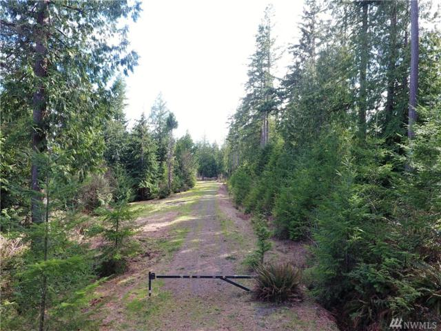 0-Lot 4 Whitney Ct, Quilcene, WA 98376 (#1246298) :: Homes on the Sound