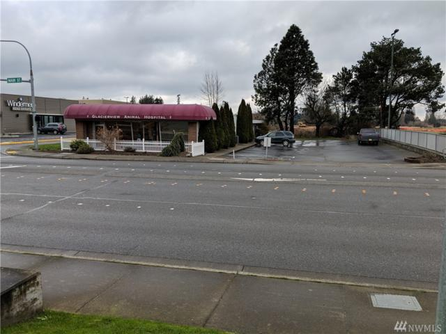 1874 E Main St, Ferndale, WA 98248 (#1246311) :: Ben Kinney Real Estate Team