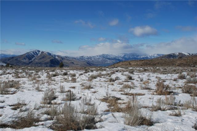 0 Mcneil Canyon, Orondo, WA 98843 (#1246806) :: Homes on the Sound