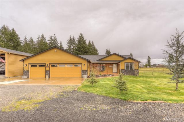 18448 Apricot St SW, Rochester, WA 98579 (#1246849) :: Homes on the Sound