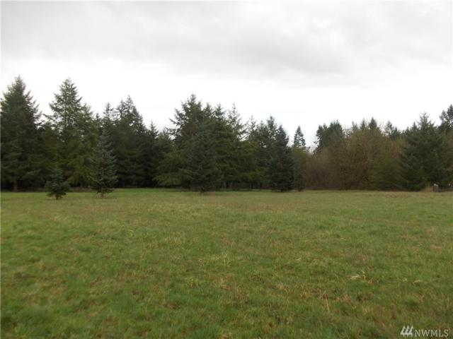 11543 School Land Rd SW, Rochester, WA 98579 (#1246857) :: Homes on the Sound