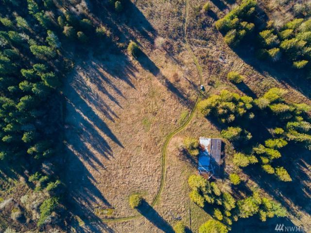 34208 State Route 507 S, Roy, WA 98580 (#1246912) :: Homes on the Sound