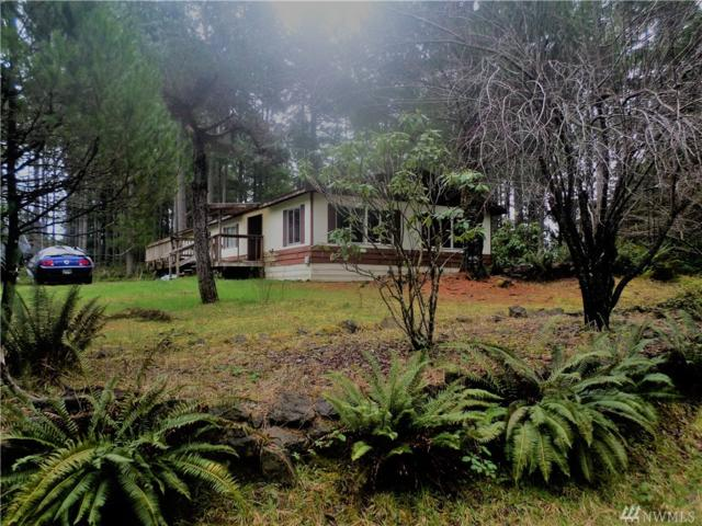 50 N Cod Place, Hoodsport, WA 98548 (#1246965) :: Homes on the Sound