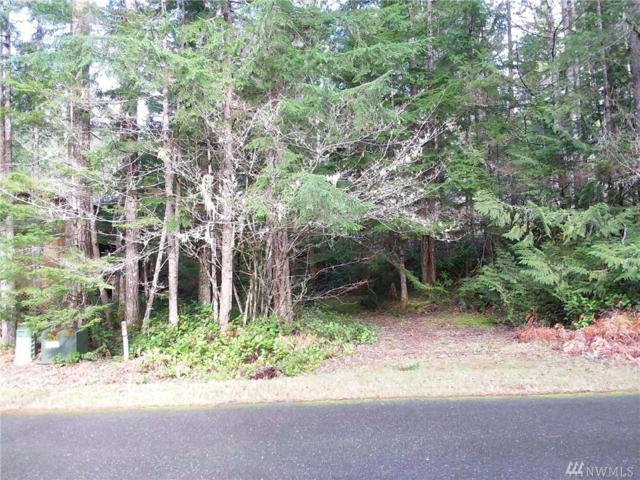 111 N Deer Lane, Hoodsport, WA 98548 (#1247097) :: Homes on the Sound