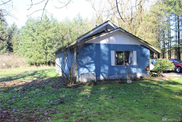 7338 James Rd SW, Rochester, WA 98579 (#1247562) :: Homes on the Sound