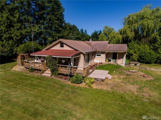 9563 Delta Line Rd, Blaine, WA 98230 (#1247775) :: Homes on the Sound