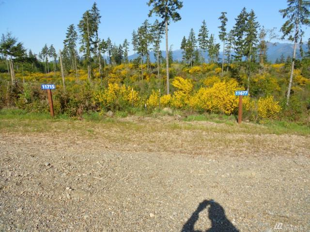11715 NW Pioneer Rd, Seabeck, WA 98380 (#1247846) :: Tribeca NW Real Estate