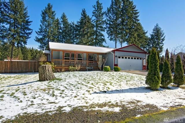 13317 105th Ave NW, Gig Harbor, WA 98329 (#1247872) :: Homes on the Sound