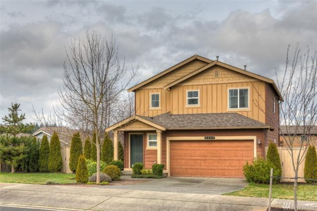 7237 286th Place NW, Stanwood, WA 98292 (#1247916) :: Real Estate Solutions Group