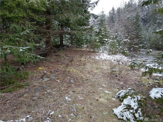 0 Butter Creek Lane, Packwood, WA 98361 (#1248005) :: Carroll & Lions