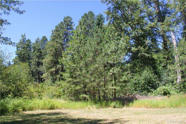 0 W Fifth St, Cle Elum, WA 98922 (#1248329) :: Homes on the Sound