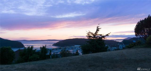 0-NHN View Place, Anacortes, WA 98221 (#1248422) :: Pettruzzelli Team