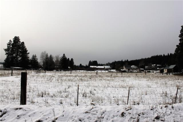 0 Xxx Cottage Ave, Cle Elum, WA 98922 (#1248628) :: Homes on the Sound