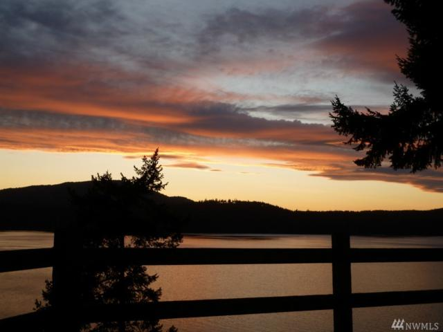 320 Loon Song Lane, Orcas Island, WA 98245 (#1249591) :: Canterwood Real Estate Team