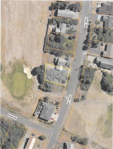 582 NE Canal Drive, Ocean Shores, WA 98569 (#1249658) :: Homes on the Sound