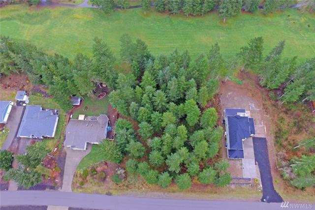 630 E Soderberg Rd, Allyn, WA 98524 (#1249977) :: Canterwood Real Estate Team