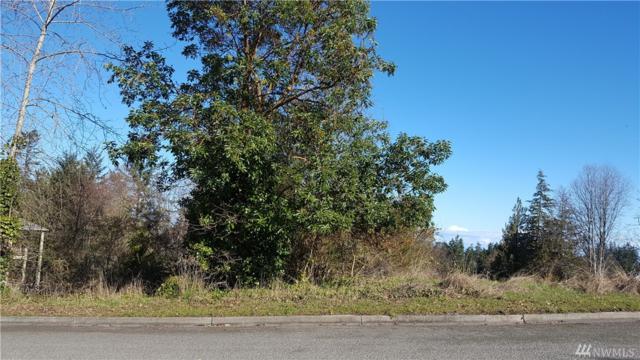 0-Div1 Samara Dr.  Lot 19, Port Angeles, WA 98363 (#1250200) :: Keller Williams - Shook Home Group