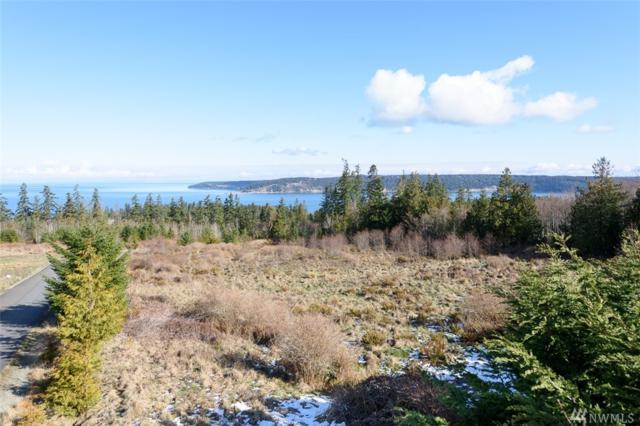 9999 View Ridge Lot 6, Sequim, WA 98382 (#1250475) :: Chris Cross Real Estate Group
