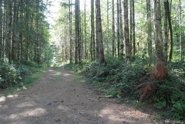 0-Lot 2 Zangle Rd NE, Olympia, WA 98506 (#1250798) :: Northwest Home Team Realty, LLC