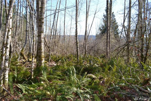 157-xx Griggs Rd E, Graham, WA 98338 (#1251148) :: Homes on the Sound