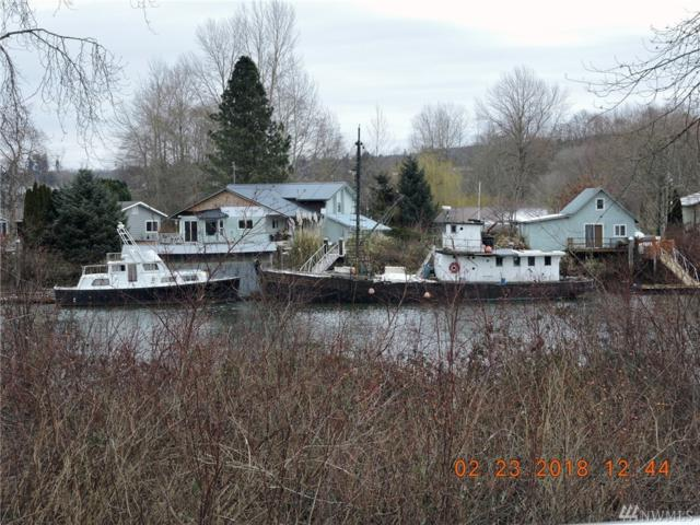 100 W Little Island Rd, Cathlamet, WA 98612 (#1251724) :: Real Estate Solutions Group