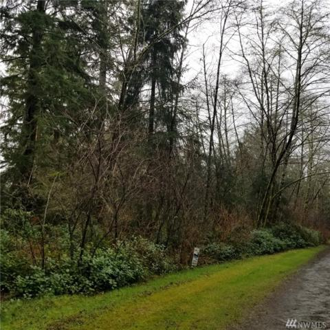 2720 357th Lane, Ocean Park, WA 98640 (#1252169) :: Real Estate Solutions Group