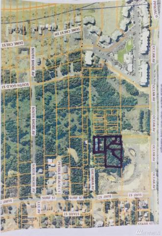 0 Sherman Ave, Westport, WA 98595 (#1252570) :: The Vija Group - Keller Williams Realty