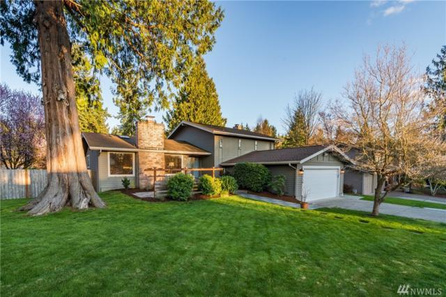 12118 105th Ave NE, Kirkland, WA 98034 (#1253216) :: Keller Williams - Shook Home Group