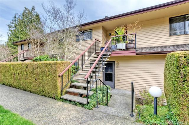 10613 Glen Acres Dr S, Seattle, WA 98168 (#1253592) :: Tribeca NW Real Estate