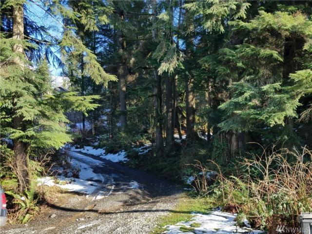 19626 Silverton Wy, Granite Falls, WA 98252 (#1254200) :: Alchemy Real Estate