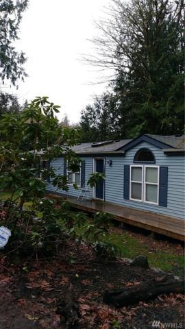 131 Blake St, Belfair, WA 98528 (#1254887) :: The Vija Group - Keller Williams Realty