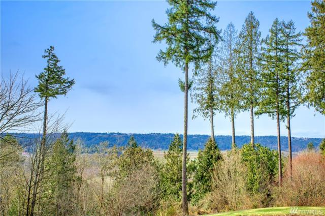 10303 302nd Wy NE, Carnation, WA 98014 (#1255604) :: The Robert Ott Group