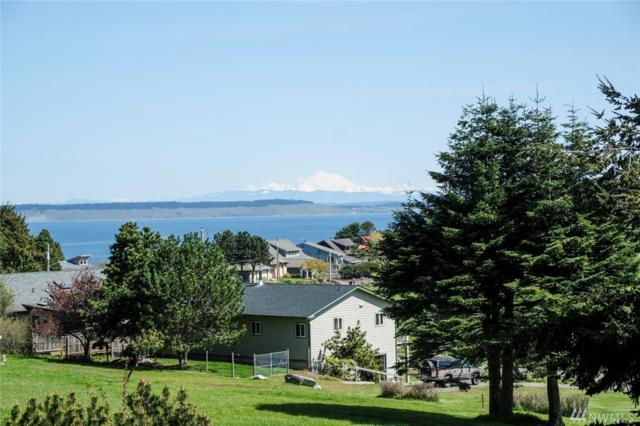 2740 Peary Ave, Port Townsend, WA 98368 (#1255754) :: Homes on the Sound