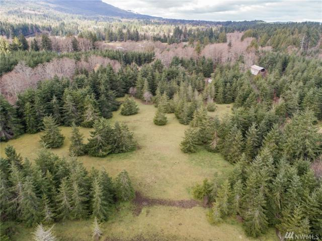 0 Thompson Rd, Port Angeles, WA 98362 (#1255857) :: Real Estate Solutions Group