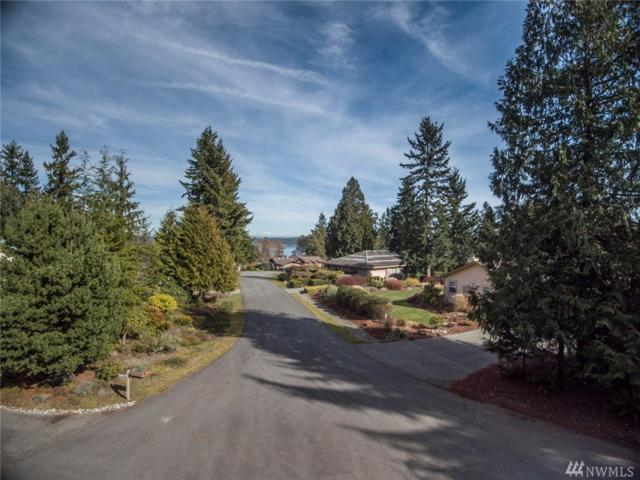 45 Wellington Ct, Port Townsend, WA 98368 (#1256783) :: Ben Kinney Real Estate Team