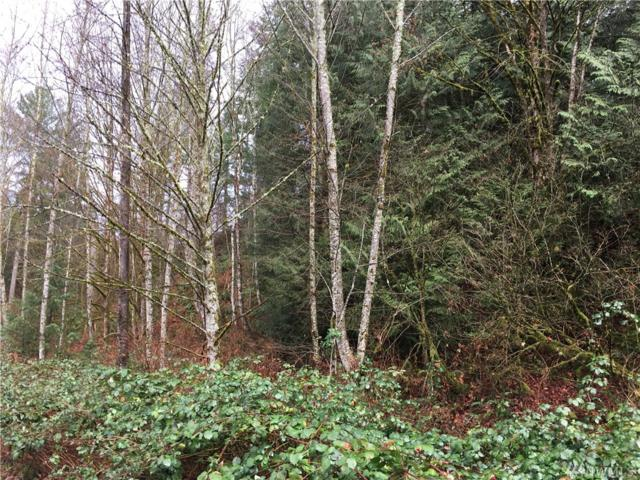 0 426th Ave Se, Gold Bar, WA 98251 (#1257145) :: Better Homes and Gardens Real Estate McKenzie Group