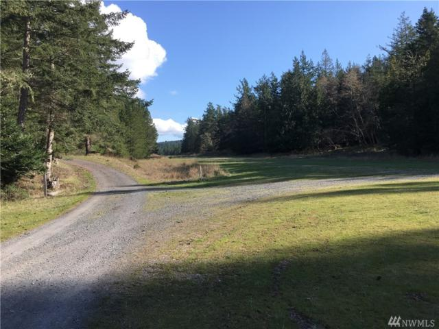 0-XXX Lot A Circle Rd, Crane Island, WA 98245 (#1257354) :: Crutcher Dennis - My Puget Sound Homes