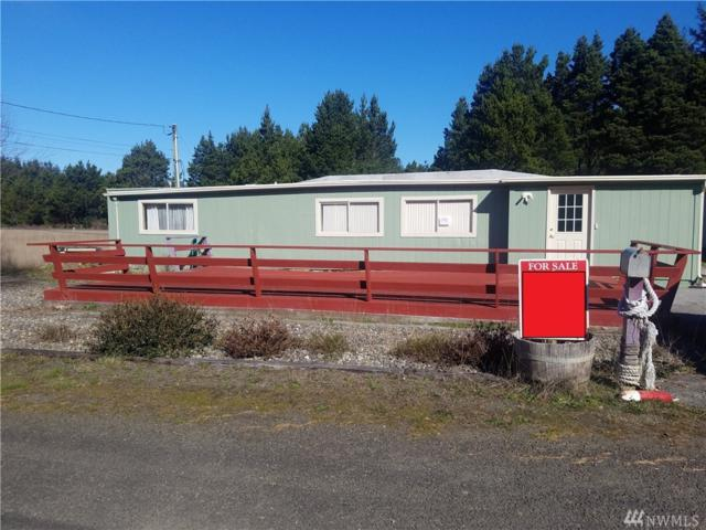 1311 189th Place, Long Beach, WA 98631 (#1257868) :: Keller Williams Everett
