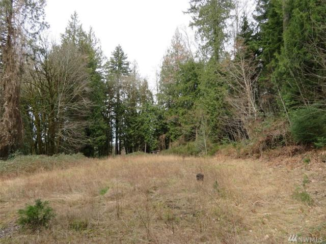 191 E Graham Rd, Belfair, WA 98524 (#1257952) :: Priority One Realty Inc.