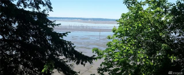 20012 Beach Dr., Stanwood, WA 98292 (#1258701) :: Pickett Street Properties