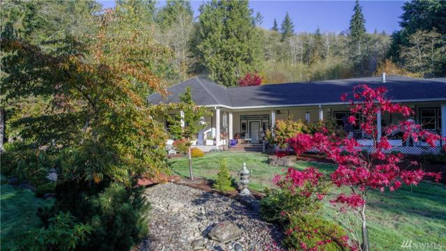 257 Mill Creek Rd, Raymond, WA 98577 (#1259281) :: Keller Williams - Shook Home Group