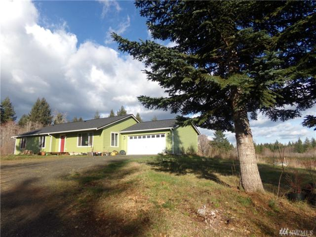 3794 W Deckerville Rd, Elma, WA 98541 (#1259585) :: Canterwood Real Estate Team