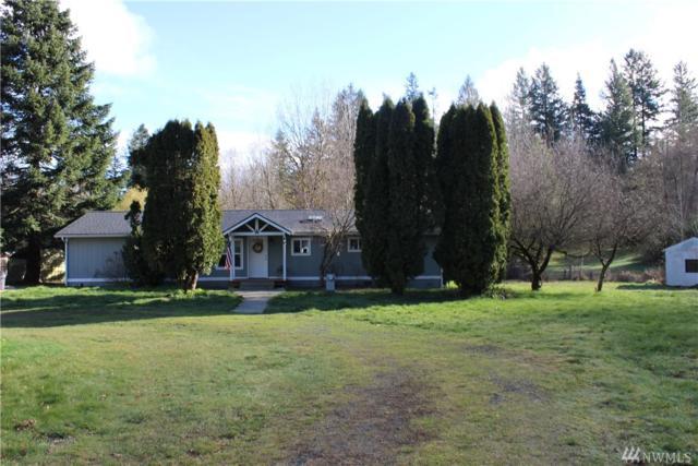 161 NE Newkirk Rd, Belfair, WA 98528 (#1260040) :: The Vija Group - Keller Williams Realty